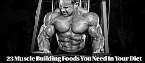 Strength and Muscle Building Foods