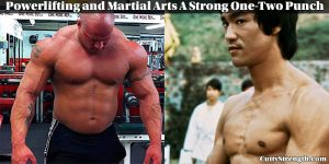 Powerlifting and Martial Arts