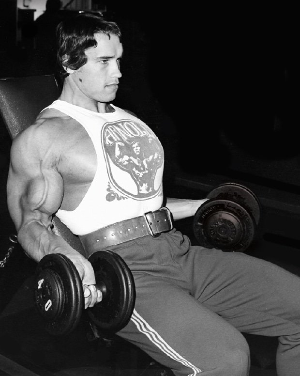 Arnold Incline Curl
